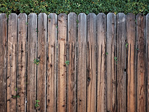 Image of residential yard fencing